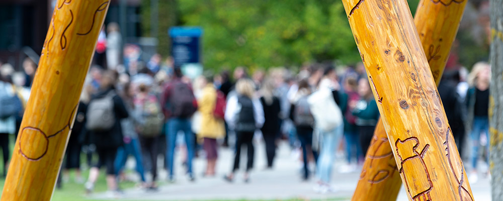 BNLF undergraduate-program